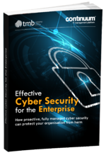 Ebook Cover_ cyber security for the enterprise